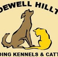 Bridewell Hilltop Boarding Kennels and Cattery