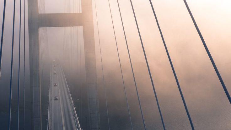 Download this free photo here www.picmelon.com #freestockphoto #freephoto #freebie /// Bridge in Fog | picmelon