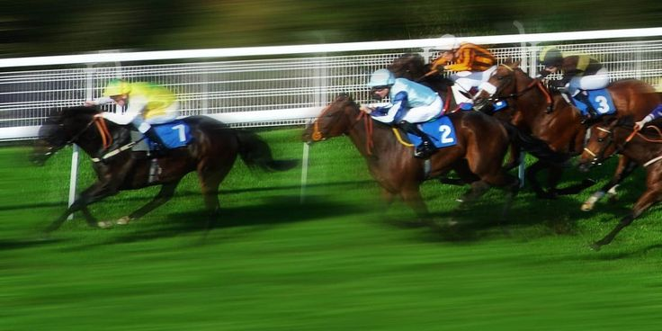 Master Racing Tipster | Betting Gods by Darren Moore, Founder & Director