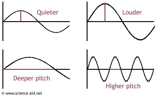 pitch  sound waves and waves on pinterest