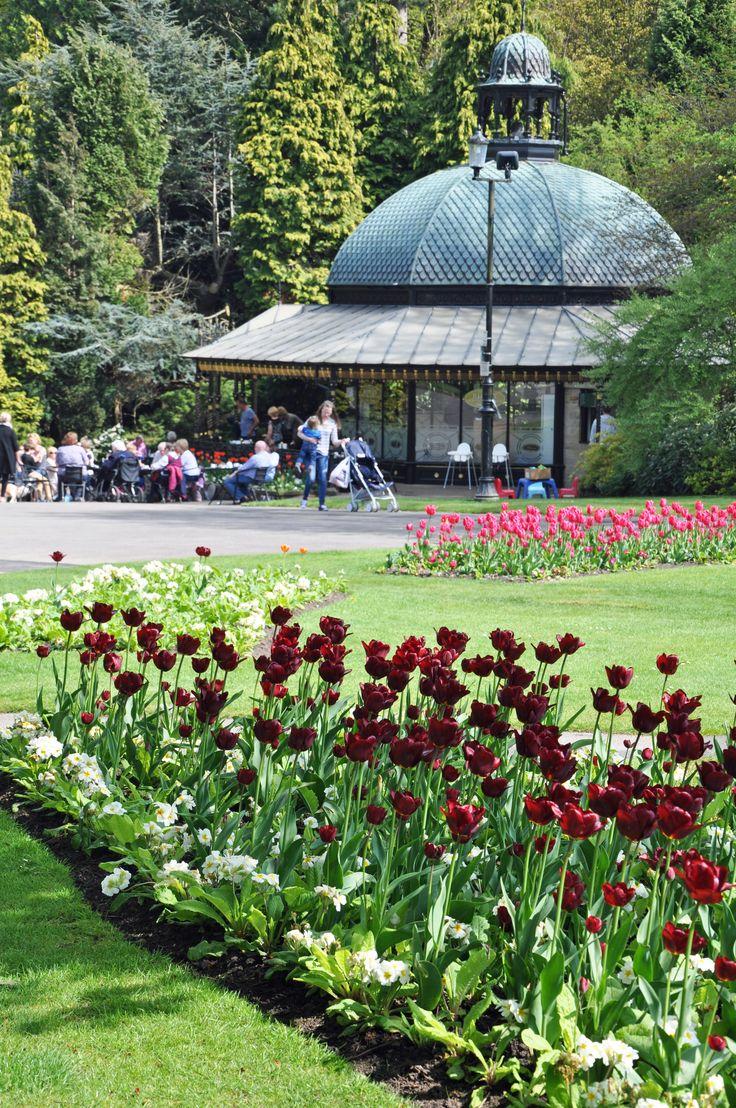 Valley Gardens. Harrogate
