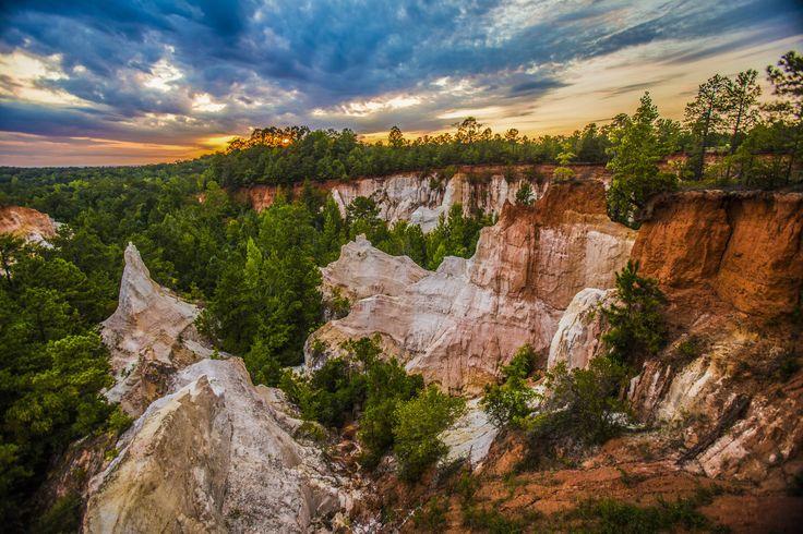West Georgia's Hidden Gem - Providence Canyon State Park - [OC][5472x3648]