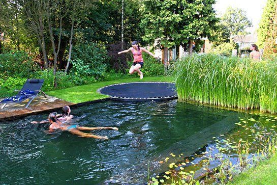 Self cleaning complete balanced ecosystem biopool with added trampoline. Biopools function by mimicking nature, combining the traditional water hole with an integrated wetlands area to filter the water, can also be used as an aquaponics system Find a local landscaping professional with a specialty in wetlands or search and study online to design one yourself, unfortunately we can't give you a complete plug and play version because it varies a good deal depending on climate and other issues.