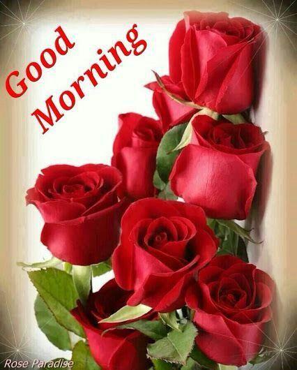 Lovely day..Good Morning