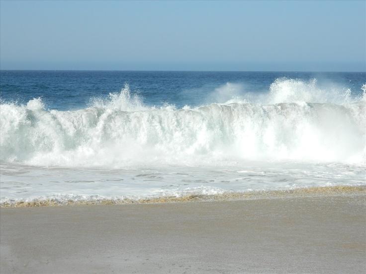 love the ocean