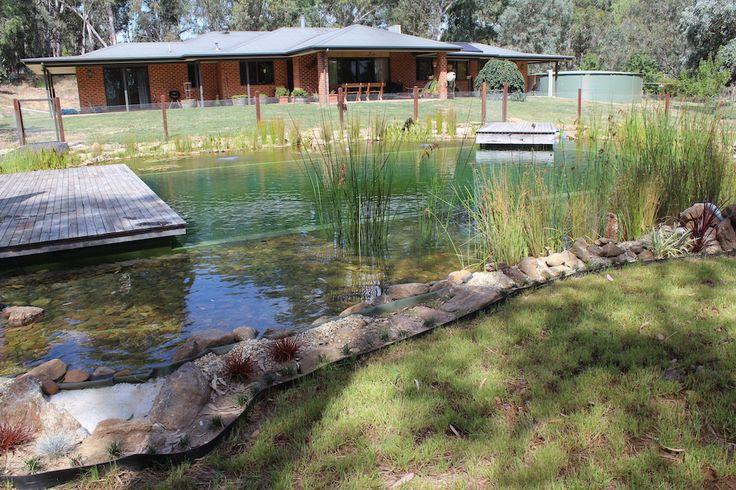 Natural pools australia naturalswimpools australia pool natural swimming pool swimpond ecopool for Natural swimming pools australia