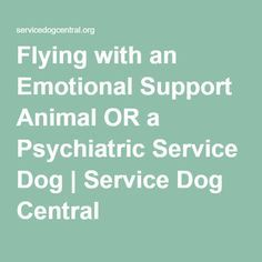 Service Dog Central Emotional Support Animal