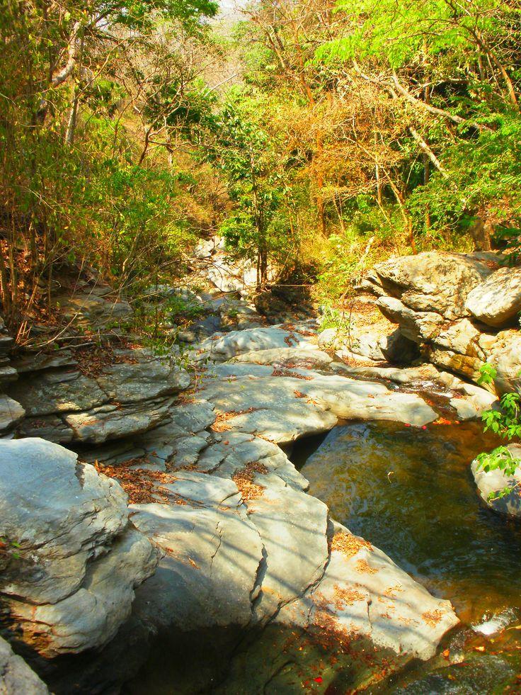 El rio...