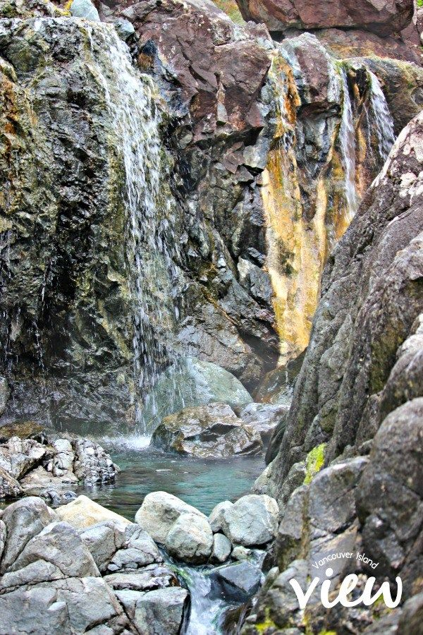 Hot Springs Cove is a tour destination you should not miss while in Tofino.