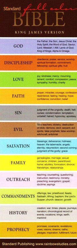 One Stone Biblical Resources: KJV Standard Full Color Study Bible - Duotone Brown/Chestnut