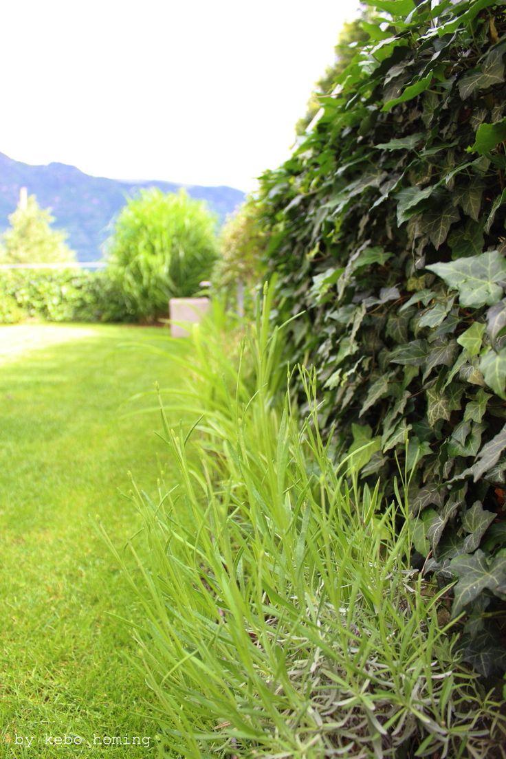 """Über 1.000 Ideen zu """"Minimalistischer Garten auf Pinterest ..."""