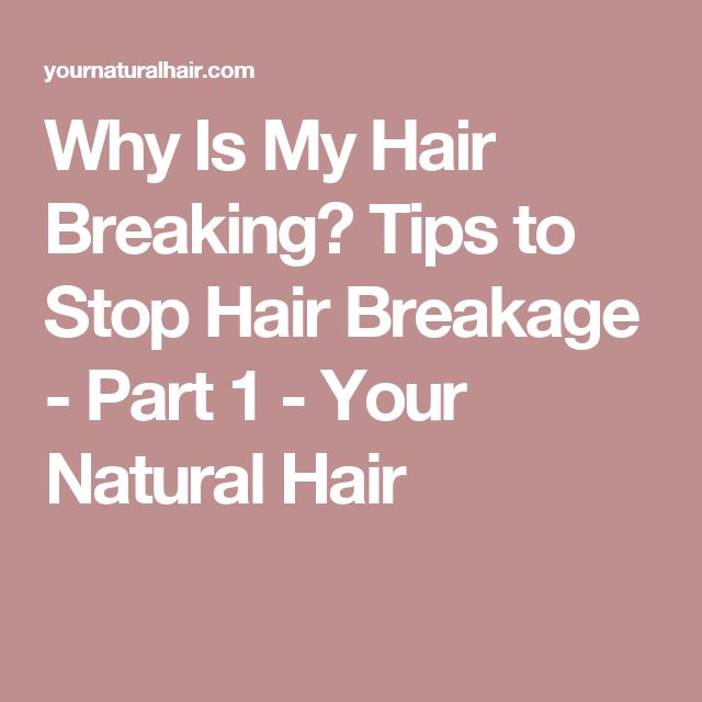 Why Is My Hair Breaking? Tips to Stop Hair Breakage - Part 1 - Your Natural Hair