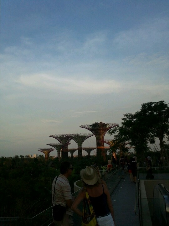 First time at Gardens by the Bay!