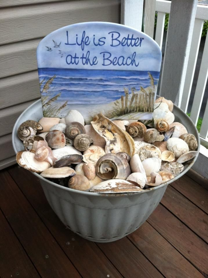 a giant container of shells