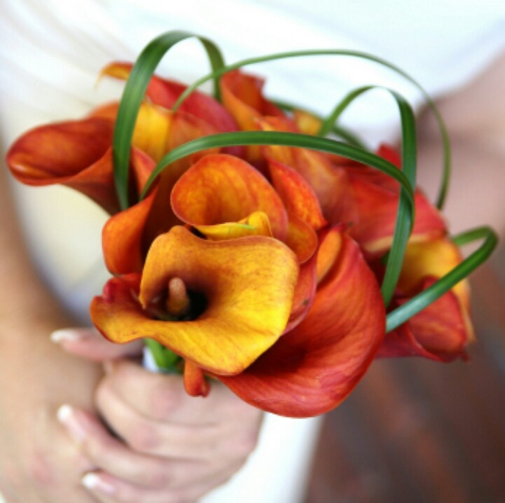 Orange and gold calla lilies - not sure about the loopy greenery, though.