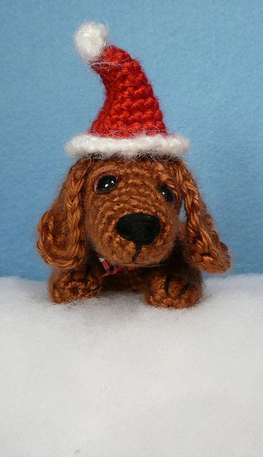 Dudley the Dachshund Wearing his Santa hat by NattypatCrochet, via Flickr