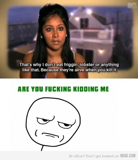 Dumb snooki is dumb