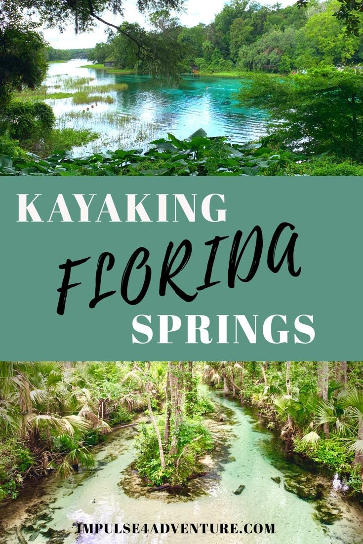 The 5 Best Natural Springs Near Orlando Impulse4adventure