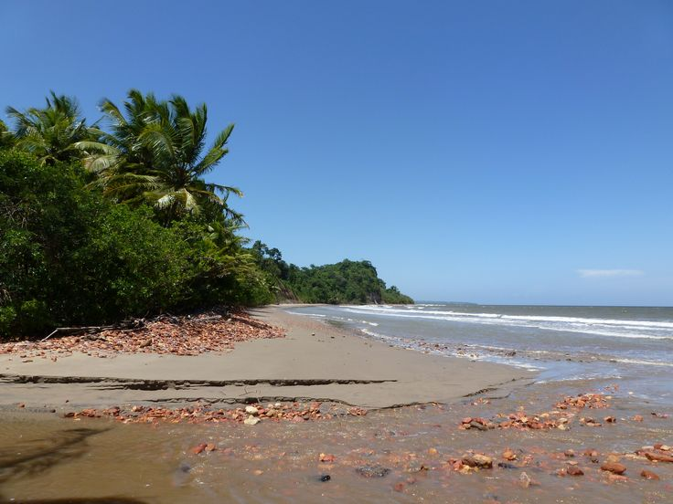 Chatham Beach is on the south coast of Trinidad about 30 minutes drive from the town of Point Fortin. Description from commons.wikimedia.org. I searched for this on bing.com/images