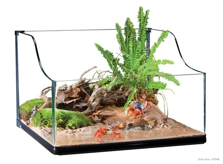 Tortugueros Cristal EXOTERRA El terrario Exo Terra Turtle es el alojamiento ideal para las tortugas acuáticas y otros reptiles acuáticos, anfibios e invertebrados.