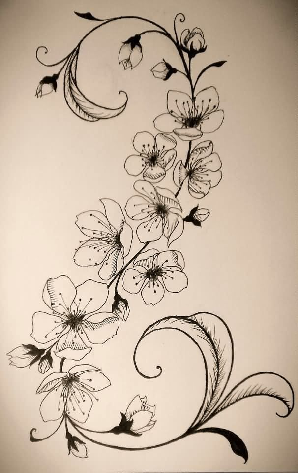 Awesome Grey Ink Cherry Blosoom Flowers Tattoo Design