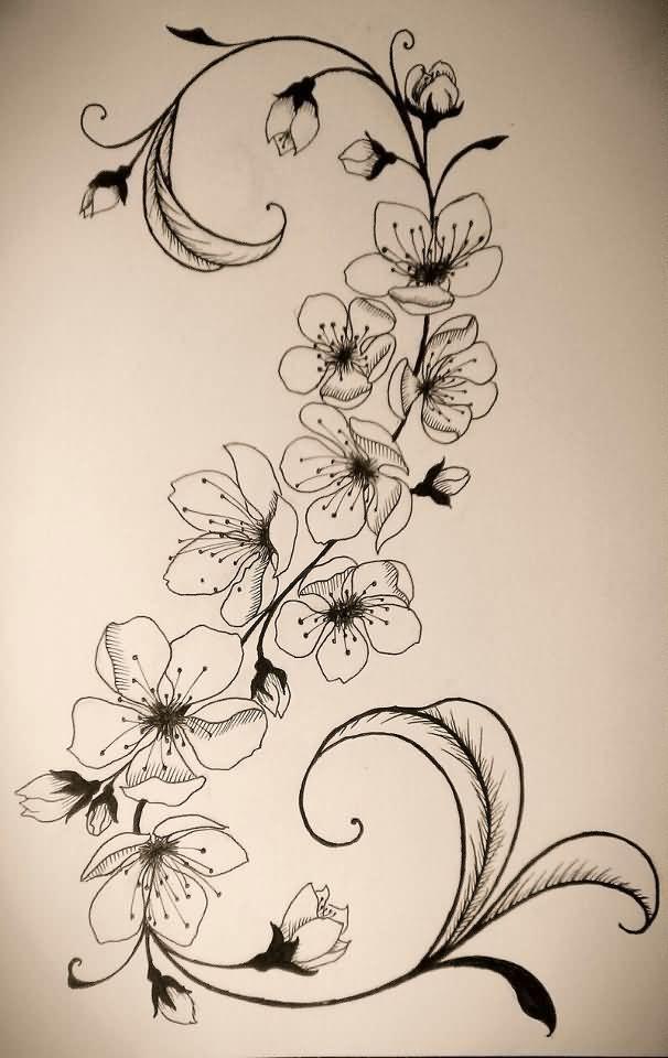 Awesome Grey Ink Cherry Blosoom Flowers Tattoo Design