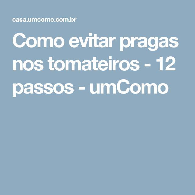 Como evitar pragas nos tomateiros - 12 passos - umComo