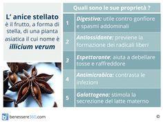 Proprietà e controindicazioni dell'anice stellato, pianta di origine asiatica dai molteplici usi: dalla cucina alla fitoterapia passando per la cosmesi. Vediamo quali sono le caratteristiche e i benefici apportati all'organismo.