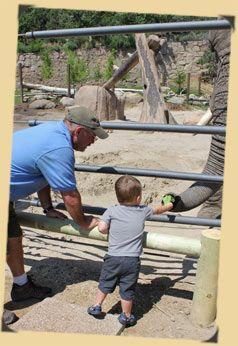 Cheyenne Mountain Zoo – The WaterholeCheyenne Mountain, Mountain Zoos