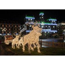 led weihnachtsbeleuchtung aussen rentier mit schlitten beleuchtet