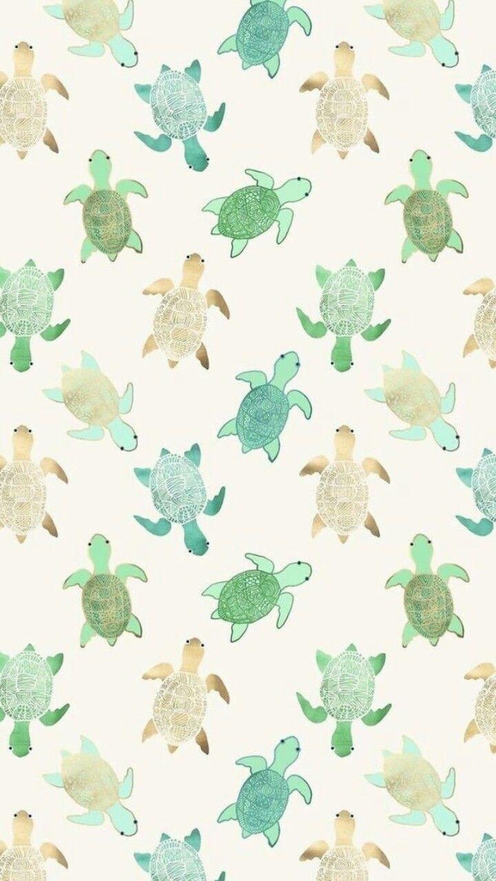 #Wallpaper #DuvarKağıtları #tumblr #kaplumbağalar #kaplumbağa