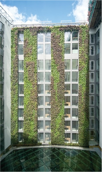 Mint Hotel Living Walls by Frosts Landscape