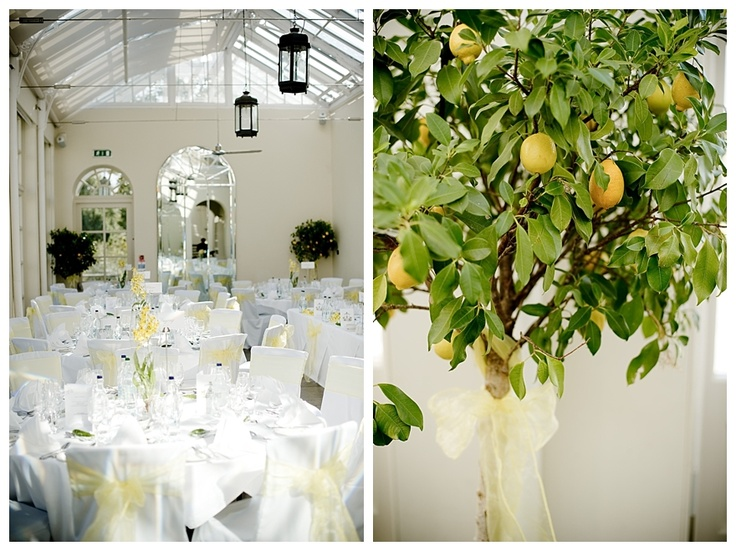 Real Enchanted Garden Wedding Kelly Steve: 11 Best Images About Lemon Wedding On Pinterest