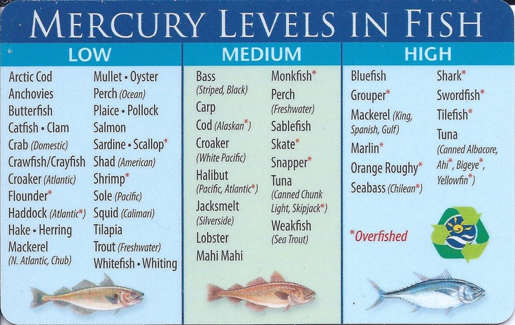52 best health food supplements images on pinterest for Mercury fish pregnancy