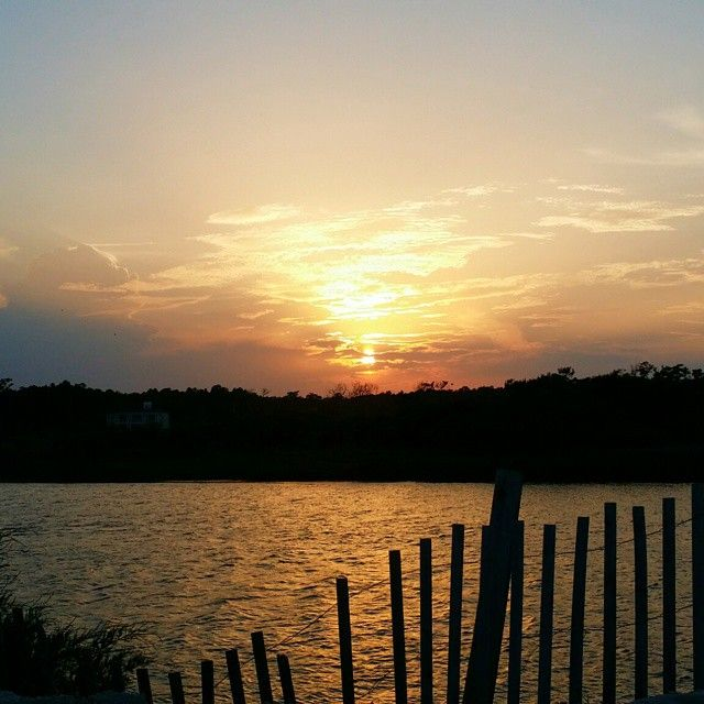 Pawleys Island Beach: 17 Best Images About Pawleys Island, SC On Pinterest