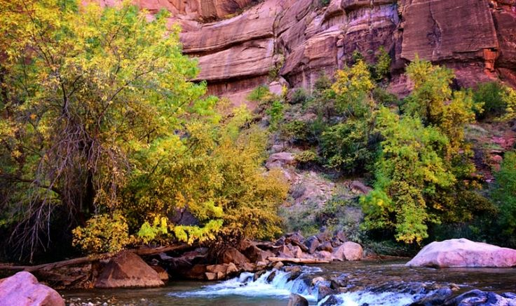 Spend a day in Zion National Park with kids