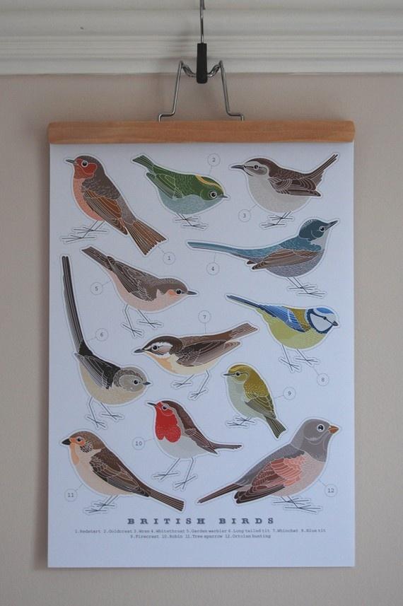british birds print | robinandrose etsy