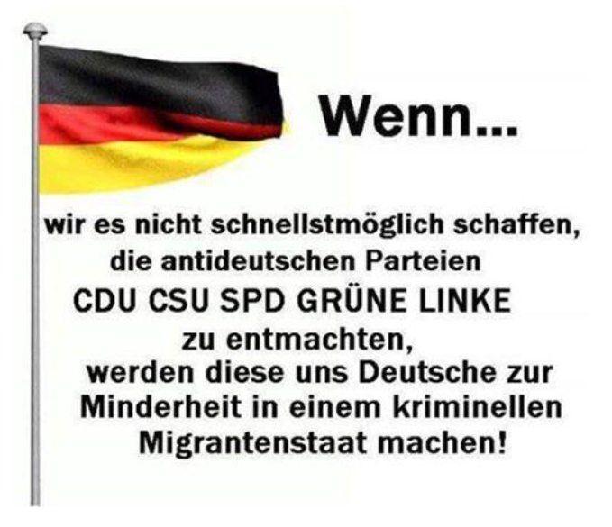 Jetzt handeln! Wenn wir es nicht schnellstmöglich schaffen, die antideutschen Parteien CDU CSU SPD GRÜNE LINKE zu entmachten, werden diese uns Deutsche zur Minderheit in einem kriminellen Migrantenstaat machen!