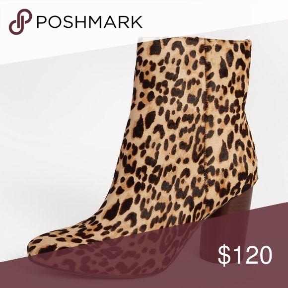8e05320b7f9db8 ... Sam Edelman Corra Leopard Booties NEW lowest discount a3526 01148 ...