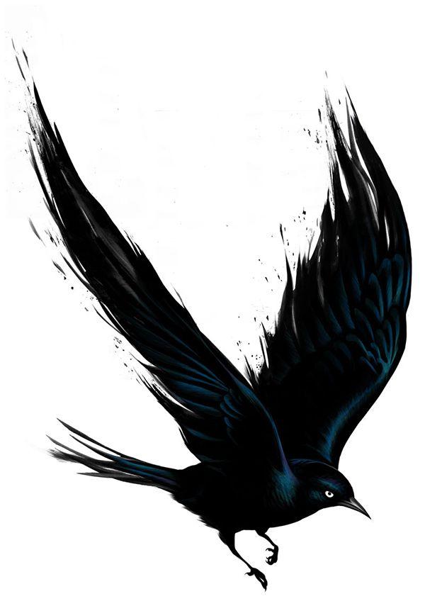 Fat Freddy's Drop - BLACKBIRD on Behance