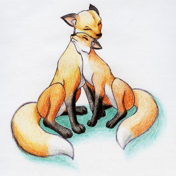 Cuddling Fox Couple by Sandy87.deviantart.com on @deviantART