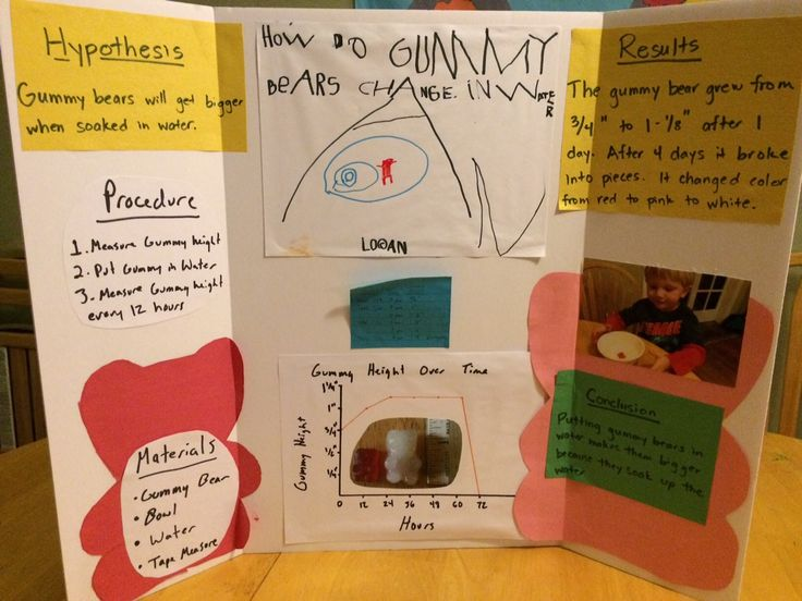 completed science fair projects Find and save ideas about science fair display board on pinterest complete science fair project ideas – easy step-by-step guides – fast science projects.