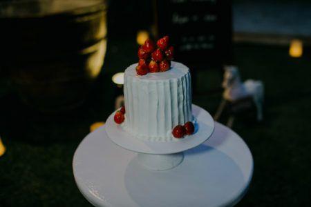 FARBE: WEISS / BILD-SCHLÜSSELWORT: Hochzeitstorte / ARCH DAYSARCH DAYS