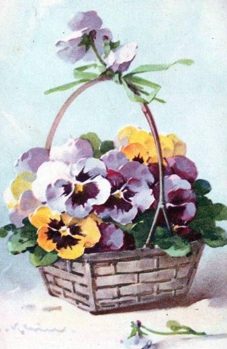 Catherine Klein postcards