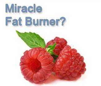 Raspberry Ketones – Miracle Fat Burner