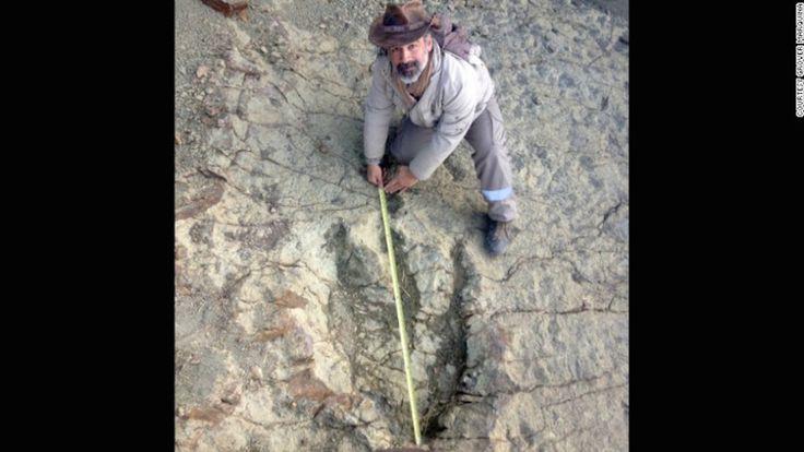 Esta es la huella de dinosaurio más grande hallada hasta ahora - Sebastián Apesteguia mide la gran huella de dinosaurio que un guía de turístas halló cerca de Sucre, en Bolivia.