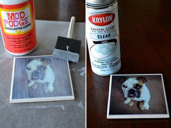 13 DIY Gifts for Dogs and Dog Lovers - thegoodstuff