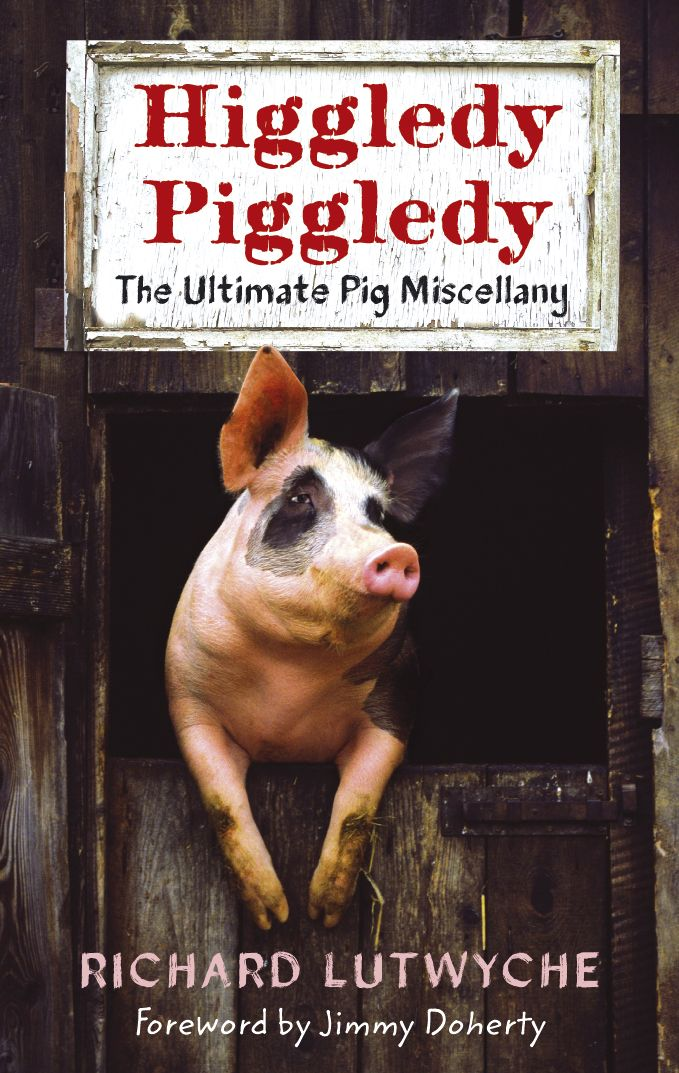 Higgledy Piggledy by Richard Lutwyche | Quiller Publishing. Pig, porker, hog, swine - however you refer to him, there is no doubt that the chubby quadrupes with the curly tail is regarded with enormous affection. The author explores the influence of the pig's characteristics and his quirky nature on our language, literature and general outlook on life. Piggy appearances in the media, both ancient and modern, are celebrated with a wide array of quotations. #pig