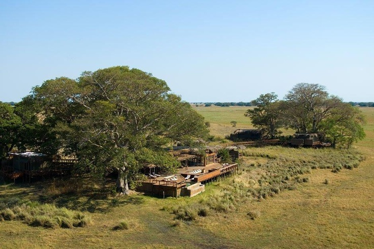 The pool at Shumba Camp on the Kafue NP's Busanga Plains is almost more part of the Busanga than it is part of the camp...