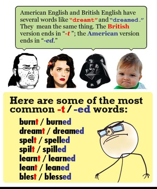 solved english language paper icse